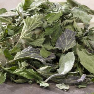 Tisane Dynamique - Chalouette en herbes